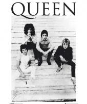 Themafeest queen poster 61 x 91 5 cm