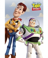 Themafeest toy story poster 61 x 91 5 cm