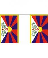 Tibet vlaggenlijn 9 m