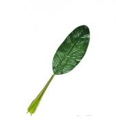 Tropisch bananenblad 74 cm