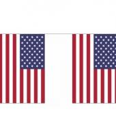 Usa vlaggenlijn 10036667