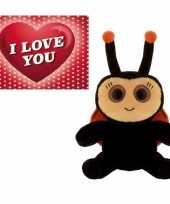 Valentijns cadeau lieveheersbeestje knuffel en valentijnskaart
