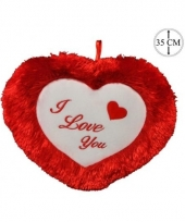 Valentijns kussen i love you 35 cm