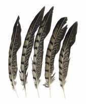 Veertjes lady amherst fazant 18 cm 5 stuks