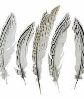 Veertjes zilver fazant 18 cm