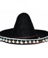Verkleed accessoire zwarte sombrero kids 25 cm