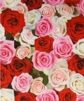 Verpakkings papier bloemetjes print 15