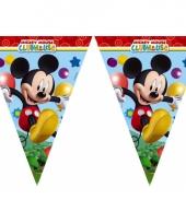 Vlaggenlijntje van mickey mouse 2 3 meter