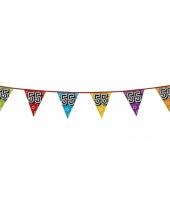 Vlaggetjes 55 jaar feestje