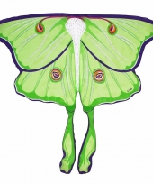 Vlinder vleugeltjes maanvlinder voor kinderen