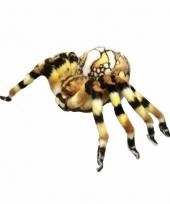 Vogelspinnen knuffel 34 cm