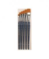 Voordeelset schmink penselen 6x