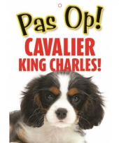 Waakbord cavalier king charles hond