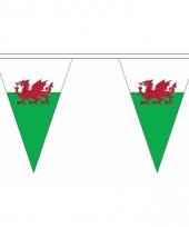 Wales versiering vlaggenlijn 5 m