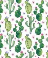 Wit groene cactussen servetten 20 stuks