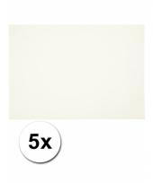 Wit knutsel karton a4 5 stuks