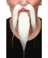 Witte puntige baard met snor