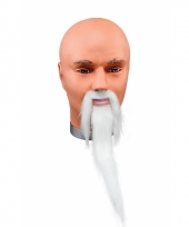 Witte tovenaars snor en baard