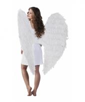Witte vleugels 120 x 120 cm