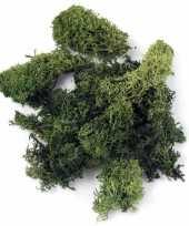 Zakjes met donkergroene mos