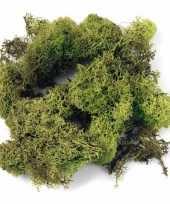 Zakjes met lichtgroene mos