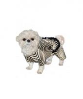 Zebra outfit voor honden