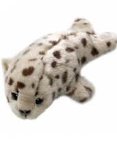 Zeehonden knuffels 21 cm