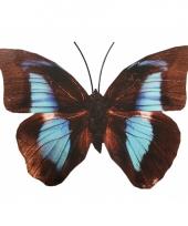 Zwart lichtblauwe gekleurde metalen vlinder