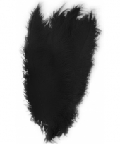 Zwarte decoratie veren 50 cm