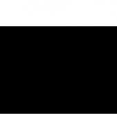 Zwarte polyester vlag 150 x 90 cm
